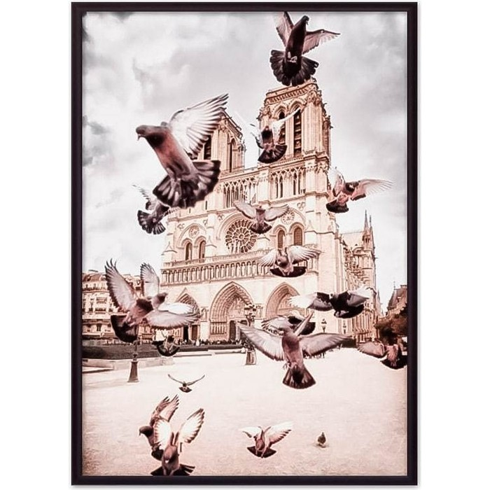 Постер в рамке Дом Корлеоне Голуби Нотр-Дам 30x40 см
