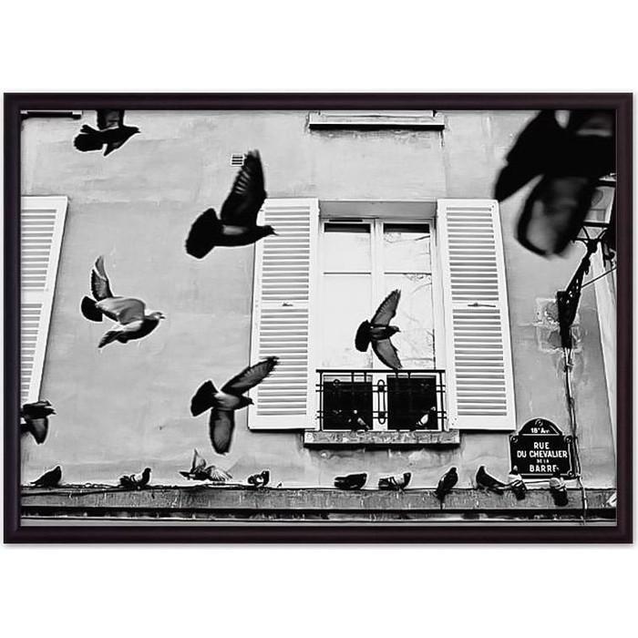 Постер в рамке Дом Корлеоне Голуби Париж 21x30 см