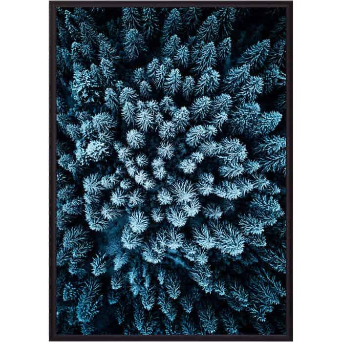 Постер в рамке Дом Корлеоне Голубой лес с высоты 50x70 см