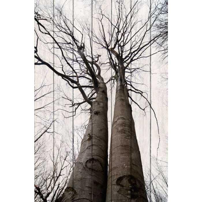 Картина на дереве Дом Корлеоне Два дерева 80x120 см
