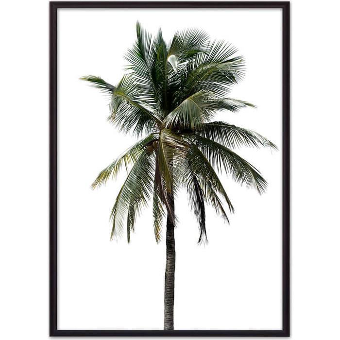Постер в рамке Дом Корлеоне Зеленая пальма 30x40 см грунт фарт сад чудес пальма 82988