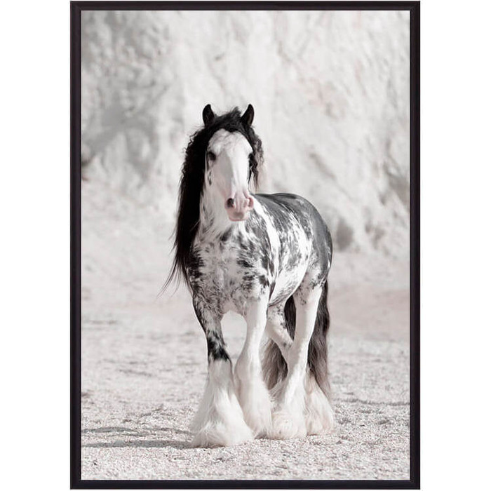 Постер в рамке Дом Корлеоне Ирландская лошадь 21x30 см