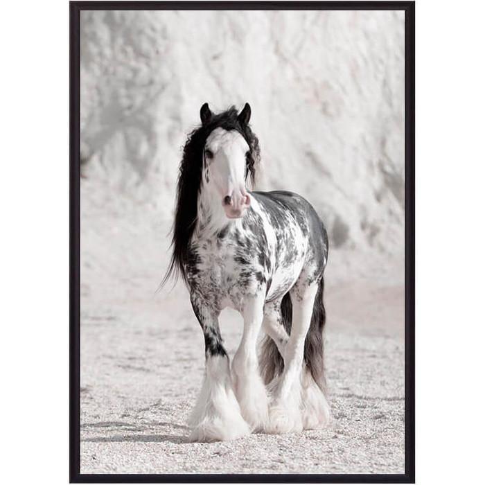 Постер в рамке Дом Корлеоне Ирландская лошадь 50x70 см