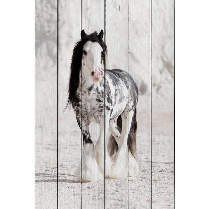 Картина на дереве Дом Корлеоне Ирландская лошадь 100x150 см