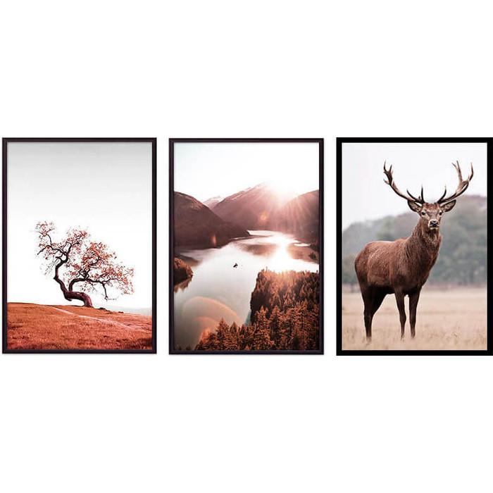 Набор из 3-х постеров Дом Корлеоне Коллаж Природа №143 50х70 см 3 шт.
