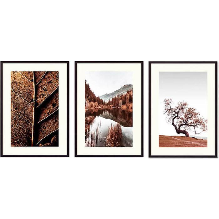Набор из 3-х постеров Дом Корлеоне Коллаж Природа №175 21х30 см 3 шт.
