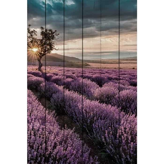Картина на дереве Дом Корлеоне Лавандовое поле 100x150 см