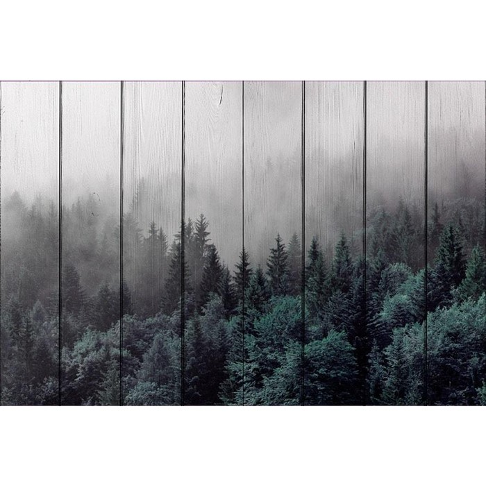 Картина на дереве Дом Корлеоне Лес 60x90 см
