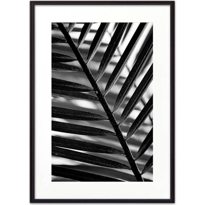 Постер в рамке Дом Корлеоне Лист пальмы 50x70 см постер в рамке дом корлеоне пальмовый лист 50x70 см