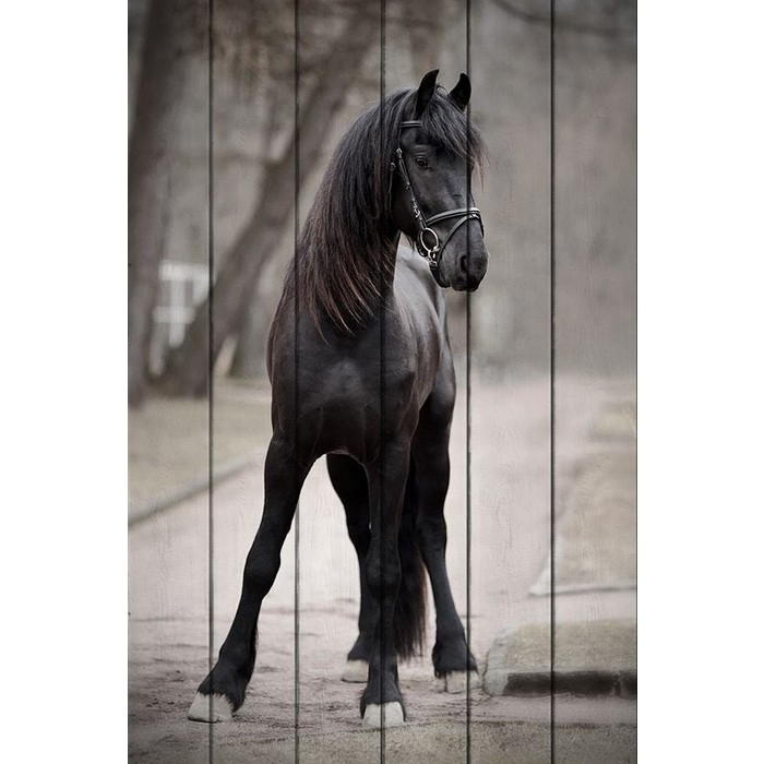 Картина на дереве Дом Корлеоне Лошадь дороге 60x90 см