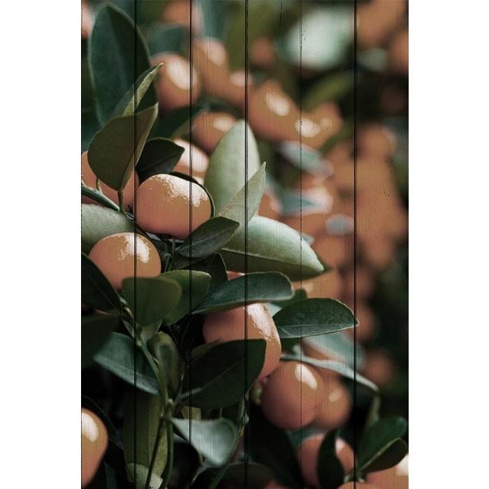 Фото - Картина на дереве Дом Корлеоне Мандарины 100x150 см картина на дереве дом корлеоне красные зонтики 100x150 см