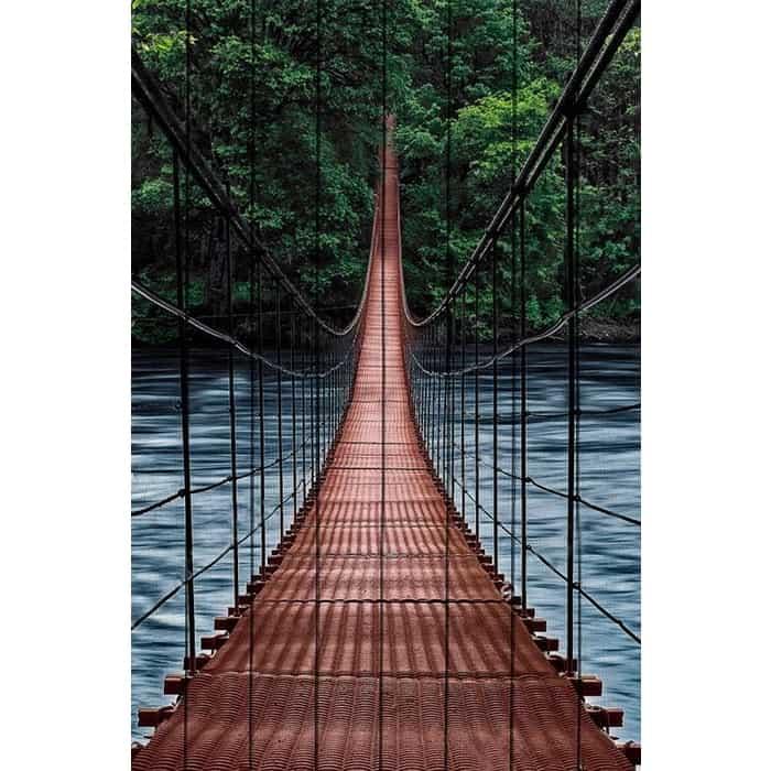 Картина на дереве Дом Корлеоне Мост в джунгли 100x150 см