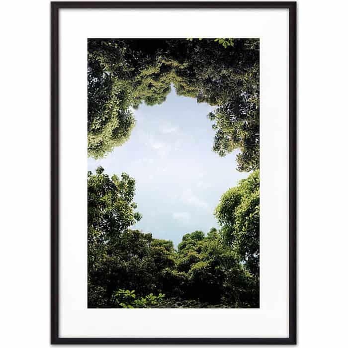 Постер в рамке Дом Корлеоне Небо сквозь листву 50x70 см