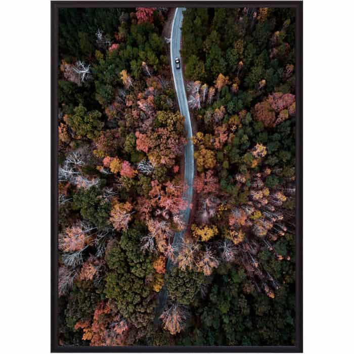 Постер в рамке Дом Корлеоне Осенний лес с высоты 50x70 см