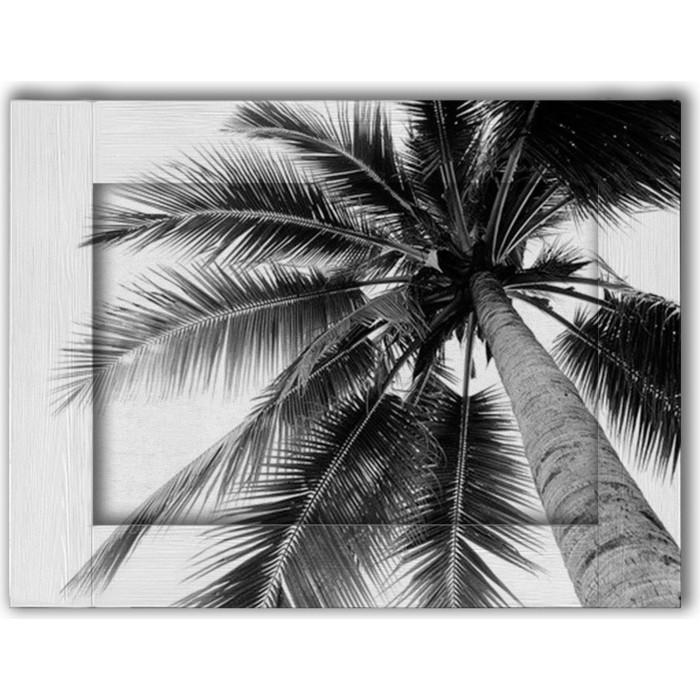 Картина с арт рамой Дом Корлеоне Пальма 45x55 см грунт фарт сад чудес пальма 82988