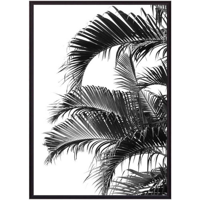Постер в рамке Дом Корлеоне Пальмовые листья 30x40 см