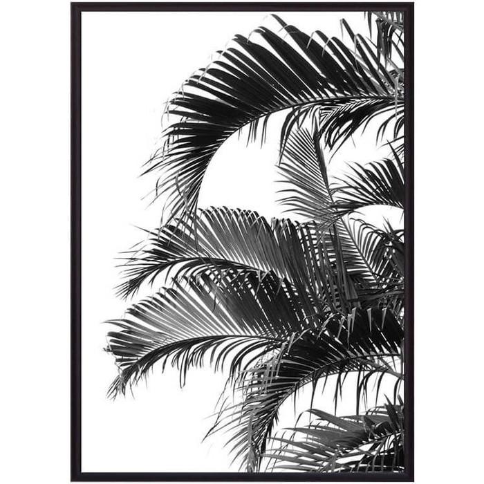 Постер в рамке Дом Корлеоне Пальмовые листья 50x70 см