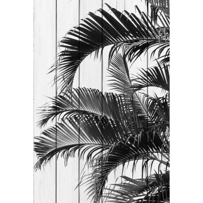 Картина на дереве Дом Корлеоне Пальмовые листья 100x150 см