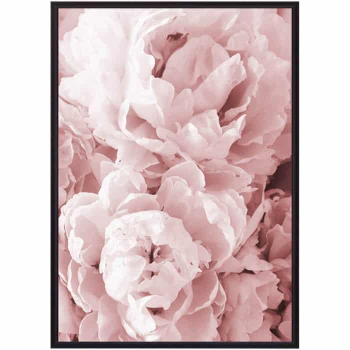 Постер в рамке Дом Корлеоне Розовые пионы 50x70 см