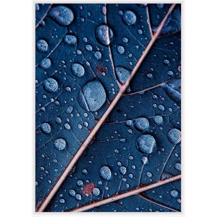Фото - Постер в рамке Дом Корлеоне Синий лист 40x60 см постер в рамке дом корлеоне горы 40x60 см