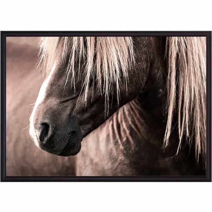 Постер в рамке Дом Корлеоне Скандинавская лошадь 50x70 см