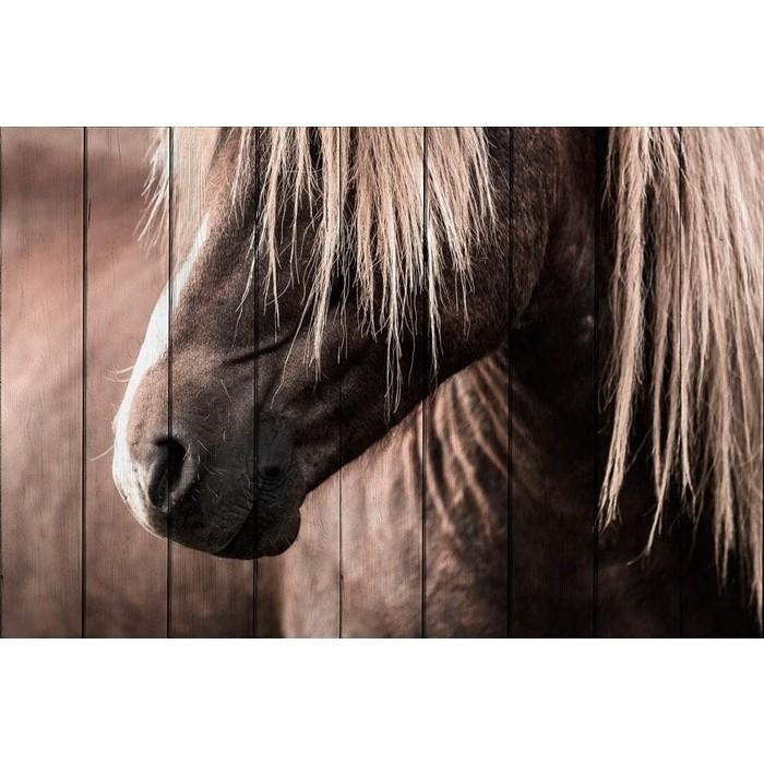 Картина на дереве Дом Корлеоне Скандинавская лошадь 60x90 см