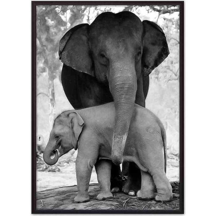 Постер в рамке Дом Корлеоне Слониха с детенышем 21x30 см smt 28 шкатулка обезьяна с детенышем nobility