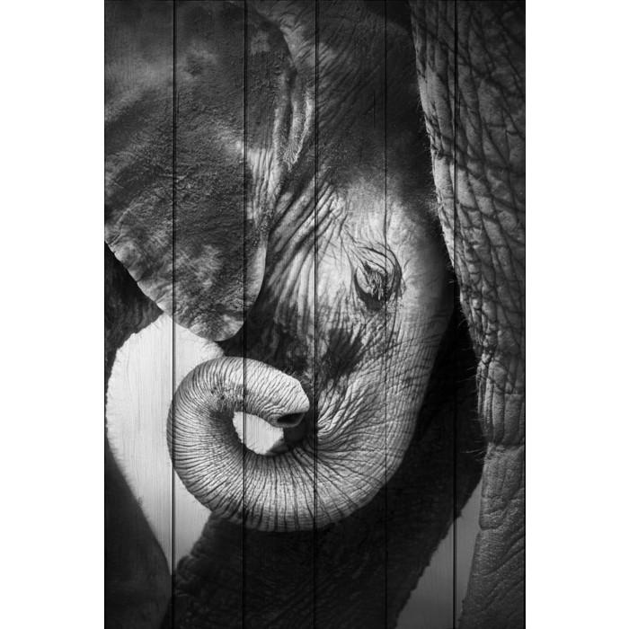 Картина на дереве Дом Корлеоне Слоны 30x40 см