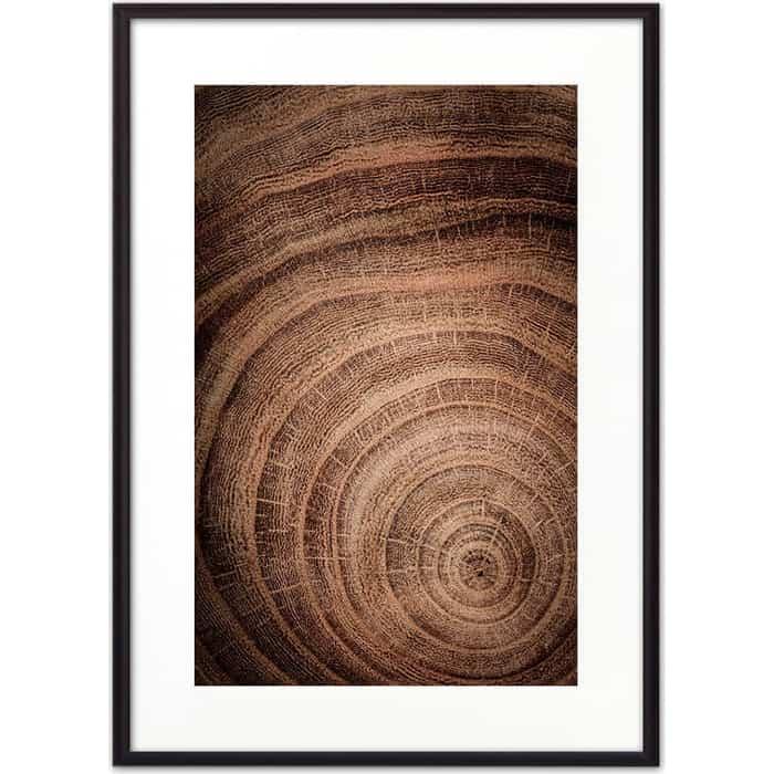 Постер в рамке Дом Корлеоне Срез дерева 40x60 см
