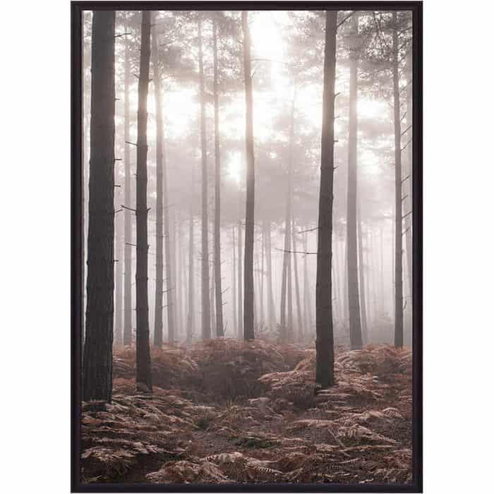 Постер в рамке Дом Корлеоне Туманный лес 50x70 см