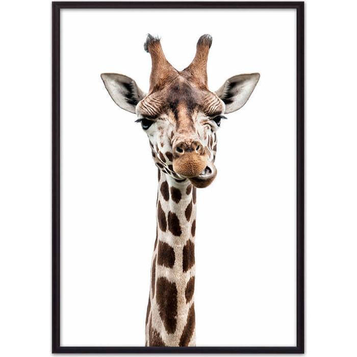 Постер в рамке Дом Корлеоне Удивленный жираф 50x70 см