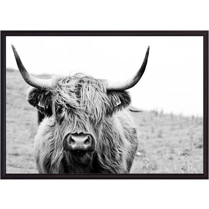 Постер в рамке Дом Корлеоне Шотландская корова 30x40 см