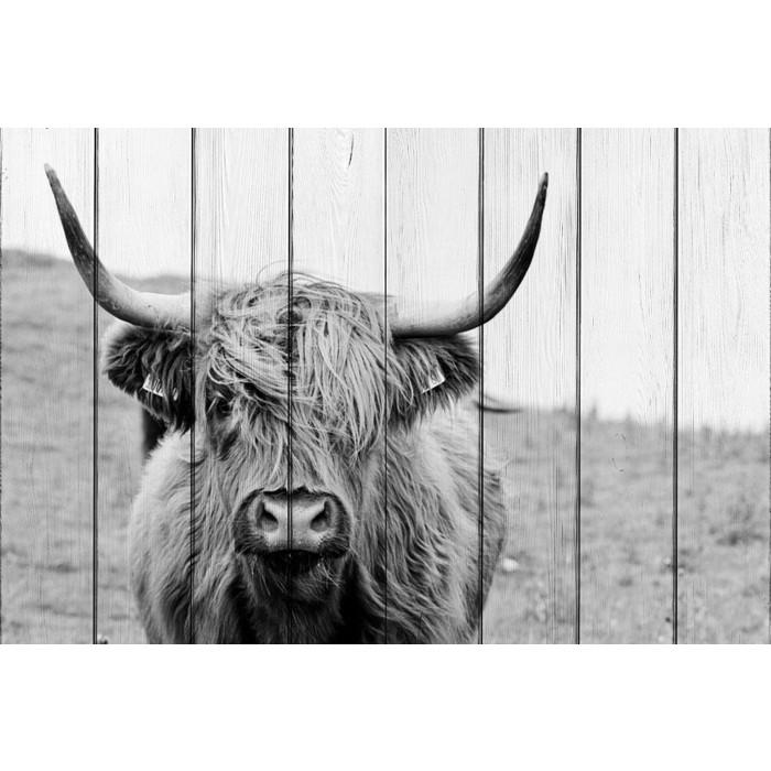 Фото - Картина на дереве Дом Корлеоне Шотландская корова 100x150 см картина на дереве дом корлеоне красные зонтики 100x150 см