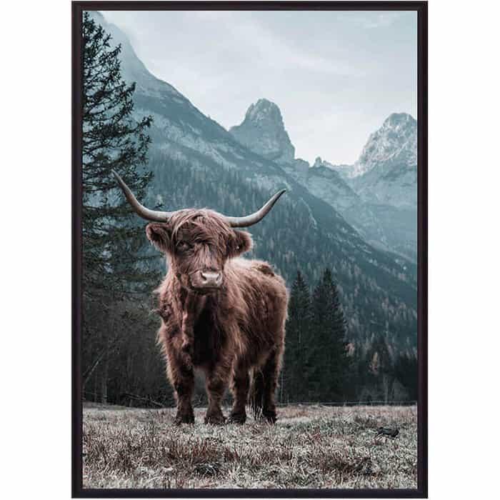 Постер в рамке Дом Корлеоне Шотландский бык 50x70 см