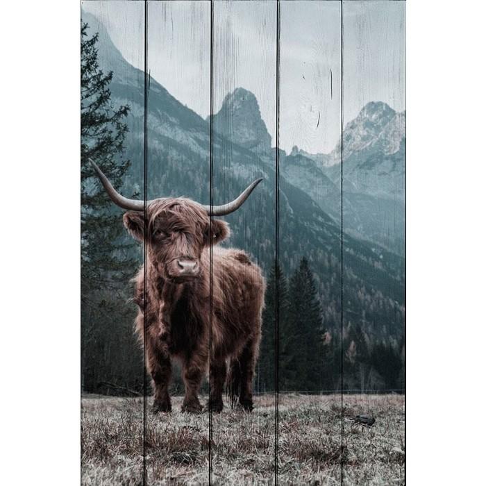 Картина на дереве Дом Корлеоне Шотландский бык 60x90 см
