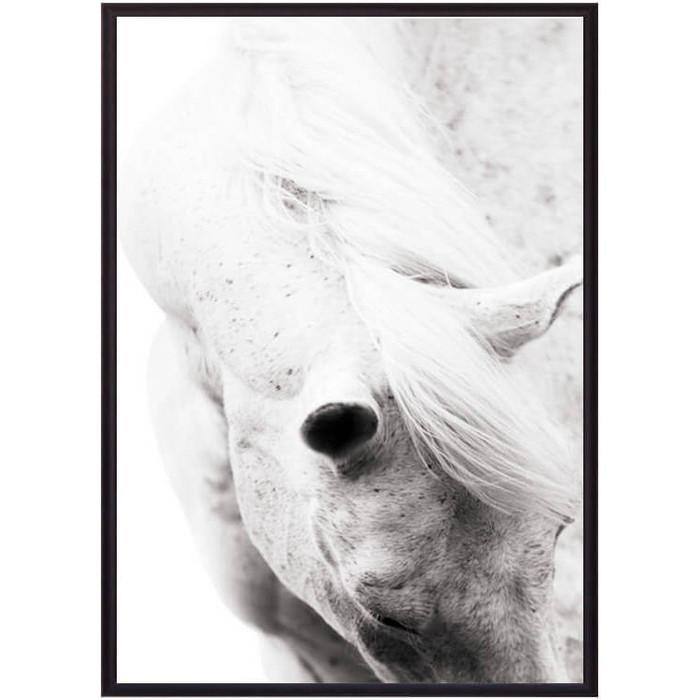 Постер в рамке Дом Корлеоне Белая лошадь 07-0281-21х30
