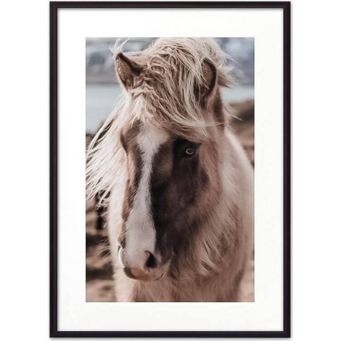 Постер в рамке Дом Корлеоне Скандинавская лошадь 07-0296-30х40