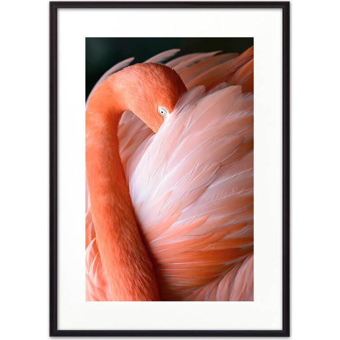 Постер в рамке Дом Корлеоне Фламинго 07-0309-21х30