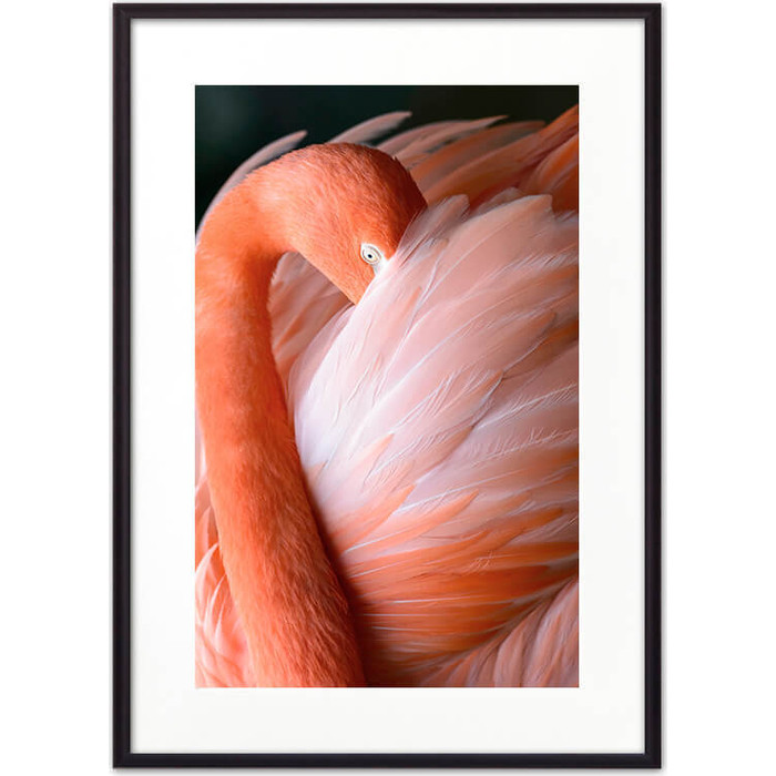 Постер в рамке Дом Корлеоне Фламинго 07-0309-40х60