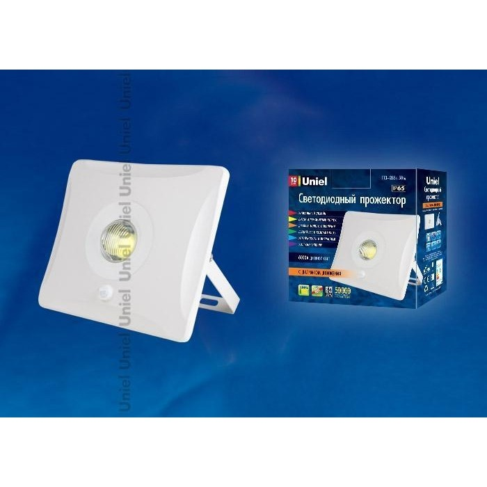 Прожектор светодиодный Uniel ULF-F31-10W/DW Sensor IP65 100-265B White