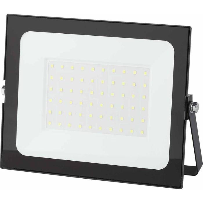 Прожектор светодиодный ЭРА LPR-021-0-65K-070