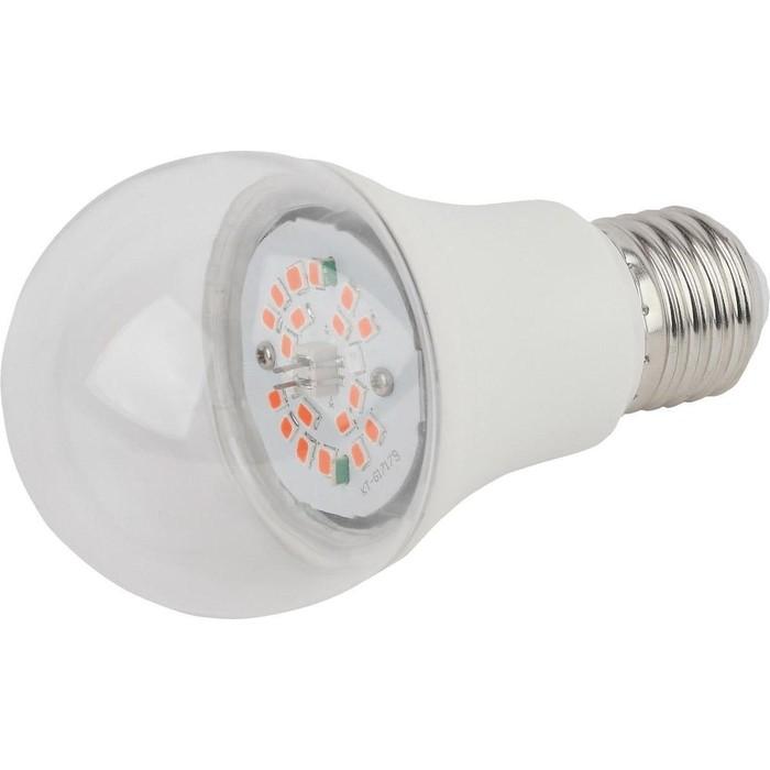 Лампа светодиодная для растений ЭРА FITO-10W-RB-E27-K