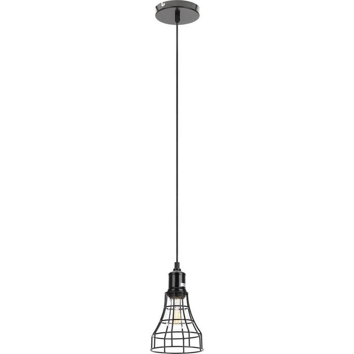 Подвесной светильник ЭРА PL10 BK