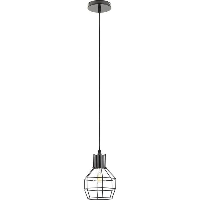 Подвесной светильник ЭРА PL11 BK