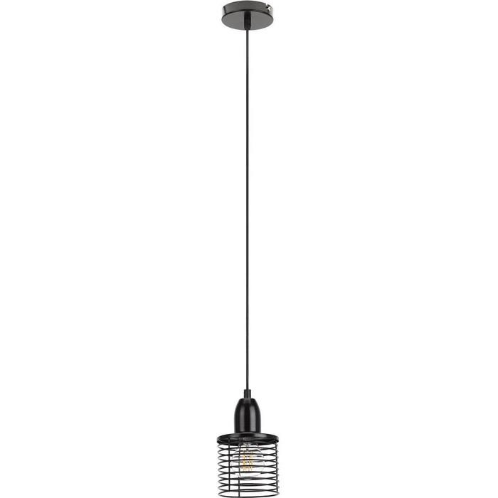 Подвесной светильник ЭРА PL5 BK