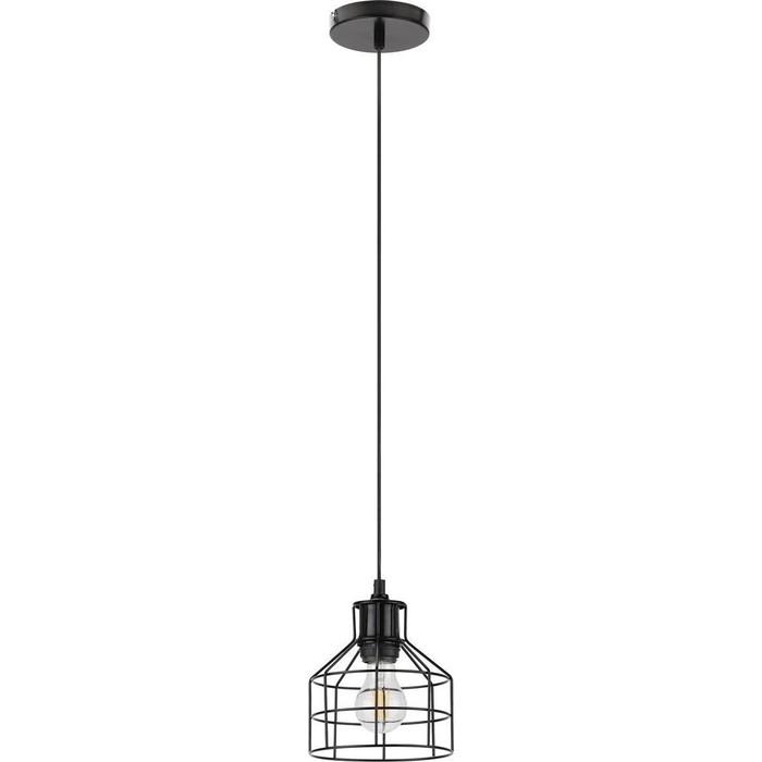 Подвесной светильник ЭРА PL9 BK