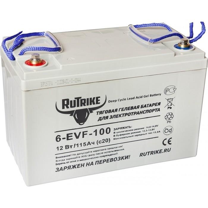 Аккумулятор Rutrike Тяговый гелевый 6-EVF-100 (12V100A/H C3)