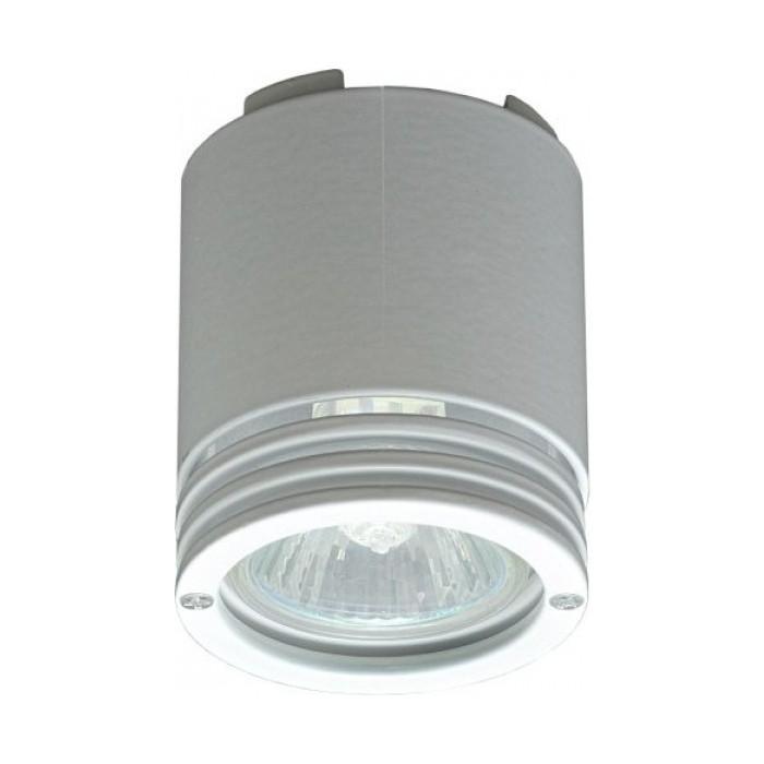 Светильник потолочный Imex IL.0001.0110