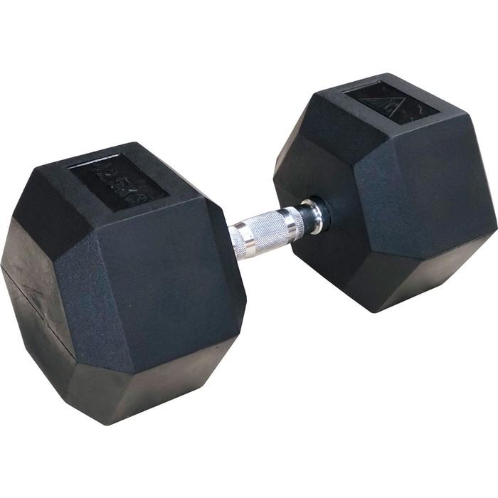 Гантели DFC 42.5кг (пара) DB001-42.5