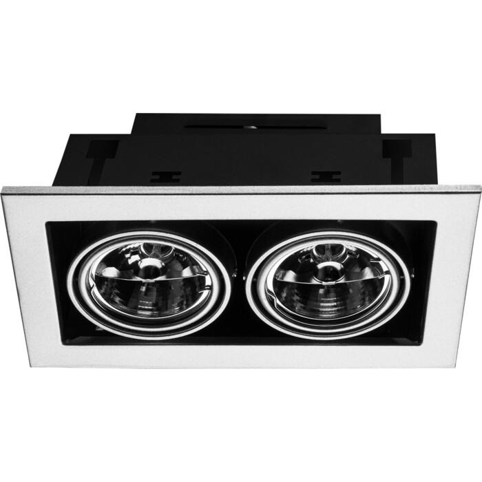 Точечный поворотный светильник Arte Lamp A5930PL-2SI